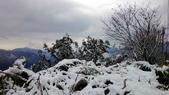 2016.01.25-烏來西羅岸雪景:P_20160125_102941.jpg