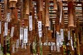 2013.11.24士林官邸菊世無雙:DSC_8753.jpg