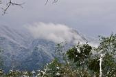 2016.01.25-烏來西羅岸雪景:DSC_5152.JPG