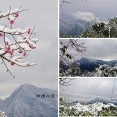 2016.01.25-烏來西羅岸雪景:相簿封面