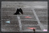 101.12.09宜蘭羅東運動公園及伯朗咖啡城堡:101.12.09宜蘭運動公園及伯朗咖啡城堡IMG_1590.jpg