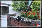 101.12.09宜蘭羅東運動公園及伯朗咖啡城堡:101.12.09宜蘭運動公園及伯朗咖啡城堡IMG_1605.jpg