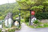20140318_陽明山_竹子湖賞海芋:P1900913(001).jpg