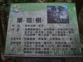20160229_土城_天上山:20160229_083048_(001).jpg