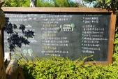 20140125_頭屋_薰衣草森林明德店:P1830097(001).jpg