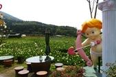 20140318_陽明山_竹子湖賞海芋:P1900840(001).jpg