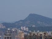 20200315_新店_和美山:2020-03-15 13-14-16(001).jpg