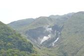 20140318_陽明山_竹子湖賞海芋:P1900857(001).jpg