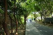 20140323_八里_水筆仔公園:P1910485(001).jpg