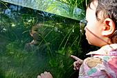 小曦一歲後生活日記:DSC_8581.jpg