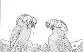 以前到現在的漫畫:1627216408.jpg