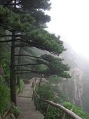 皖南~黃山(1):杭州與黃山 346.jpg