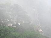 皖南~黃山(1):杭州與黃山 363.jpg
