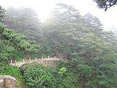 皖南~黃山(1):杭州與黃山 364.jpg