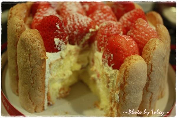 Tobey--草莓:8.jpg