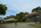 201404日本北九州:P1180143.jpg