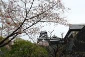201404日本北九州:P1180153.jpg
