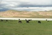 20160701-12 成都西藏巔峰之旅:IMG_1726.jpg