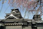 201404日本北九州:P1180182.jpg