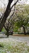 201404日本北九州:P1180204.jpg