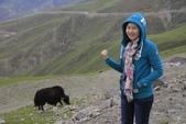 20160701-12 成都西藏巔峰之旅:_C3A2017.jpg
