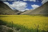 20160701-12 成都西藏巔峰之旅:_C3A2129.jpg