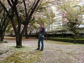 201404日本北九州:DSC_0291.jpg
