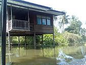 2008.1114-1122曼谷沙美島:影像061.jpg