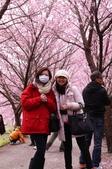 20120218武陵賞櫻塞爆單日遊:P1040628.JPG