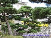日本大東北賞楓:IMG_0092-01.jpg