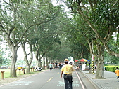 雲林 古坑 綠色隧道:115.JPG