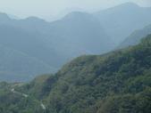 阿里山森林園區:149.JPG