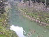 杉林溪 遊踪:IMG_20201117_134648_1.jpg