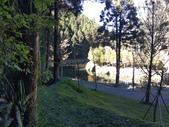 杉林溪 遊踪:IMG_20201117_102102_1.jpg