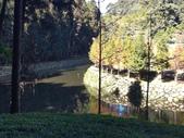 杉林溪 遊踪:IMG_20201117_102135.jpg