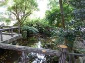 陽明山國家公園:042.JPG