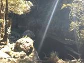 杉林溪 遊踪:IMG_20201117_104531.jpg