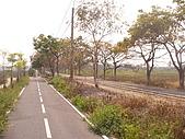 高捷  橋頭 糖廠站  :P1080625.JPG