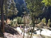 杉林溪 遊踪:IMG_20201117_105659_1.jpg