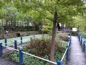 南投 埔里 台一生態農業休閒園區:IMG_20201029_161016_1.jpg