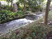 南投 埔里 台一生態農業休閒園區:IMG_20201029_161341_1.jpg