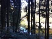 杉林溪 遊踪:IMG_20201117_102220.jpg