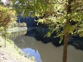杉林溪 遊踪:IMG_20201117_105304_1.jpg