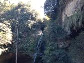 杉林溪 遊踪:IMG_20201117_121729_1.jpg