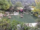 南投 埔里 台一生態農業休閒園區:IMG_20201029_161444_1.jpg