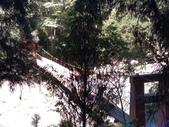 杉林溪 遊踪:IMG_20201117_103426_1.jpg