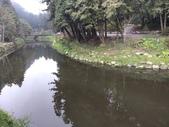 杉林溪 遊踪:IMG_20201117_140057_1.jpg