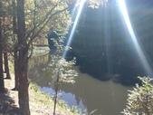 杉林溪 遊踪:IMG_20201117_105459_1.jpg