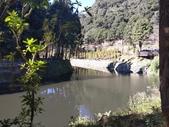 杉林溪 遊踪:IMG_20201117_100410_1.jpg