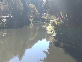 杉林溪 遊踪:IMG_20201117_101500_1.jpg